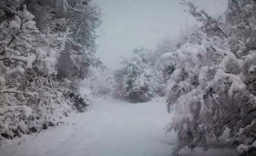 ΕΜΥ: Έρχονται βροχές, καταιγίδες και χιόνια