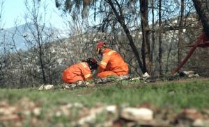 «Εθελοντές Δασοπυροπροστάτες» στην ΕΡΤ2