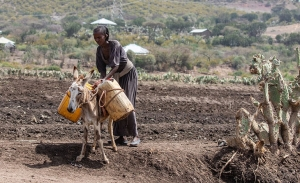 Oxfam: Μισό δισ. άνθρωποι σε κίνδυνο φτώχειας λόγω πανδημίας