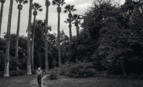 Ο Εθνικός Κήπος στις 4 εποχές του χρόνου: φωτογραφικός διαγωνισμός