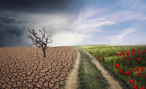 WWF Ελλάς και Vouliwatch ανοίγουν τον διάλογο για έναν νέο κλιματικό νόμο