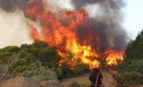 Πολιτική αντιπαράθεση για τη φωτιά στην Αιγιαλεία