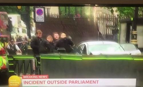 Μία σύλληψη και πολλοί τραυματίες μετά από επεισόδιο έξω από την βρετανική βουλή