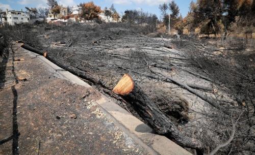 Παραλείψεις όπως στις πυρκαγιές του 2007, διαπιστώνει στο Μάτι, ο δικηγόρος των συγγενών των θυμάτων